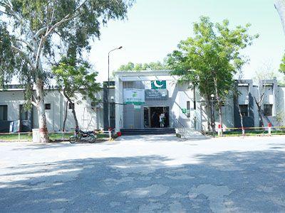 THQ Ahmedpur